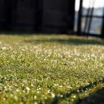Czy sztuczna trawa to dobre rozwiązanie na balkon lub taras?