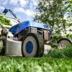Jak zadbać o trawnik i utrzymać go w dobrej kondycji cały rok?