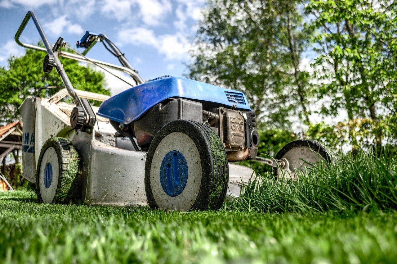 Jak pięlęgnować trawnik?